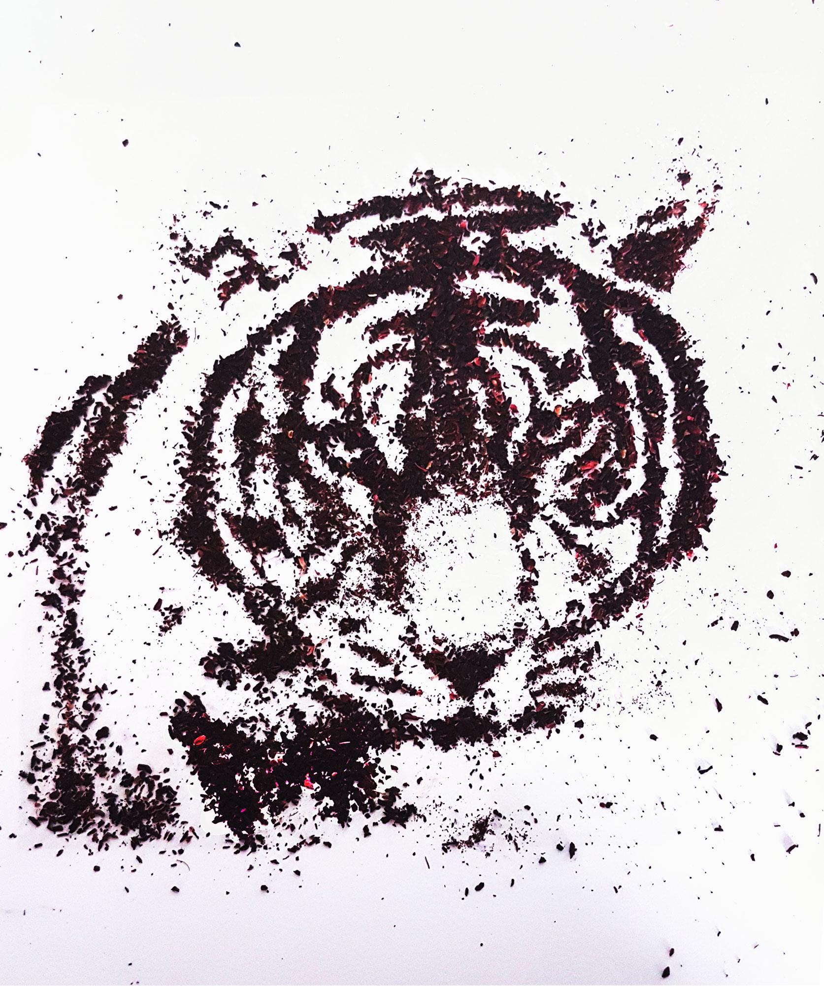 visuel tigre en thé